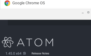 Chrome OS: What about Atom? [A]